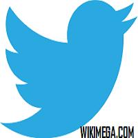 Twitter-a popular online social network